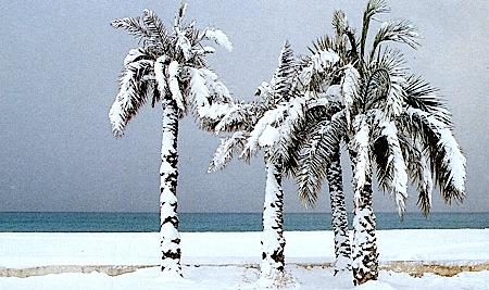 Image d'illustration pour PRÉVISIONS MÉTÉO : l'hiver sera t-il rude ?