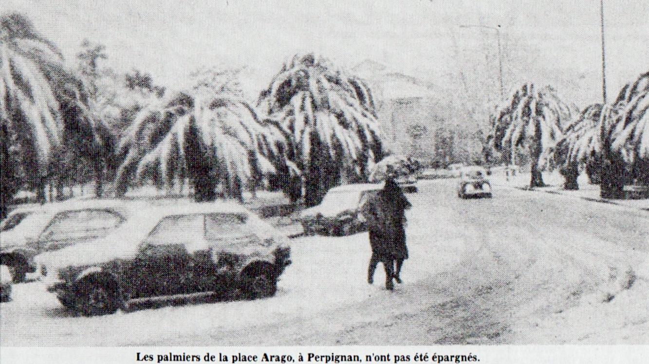 Image d'illustration pour Neige près de la Méditerranée : archives et climatologie