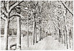 Photo de l'Almanach d'événement météo du 19/1/1940