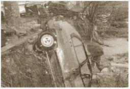Photo de l'Almanach d'événement météo du 29/1/1996