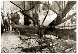 Photo de l'Almanach d'événement météo du 11/3/1963