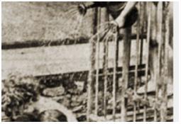 Photo de l'Almanach d'événement météo du 19/6/1941