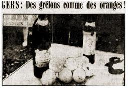 Photo de l'Almanach d'événement météo du 16/9/1973