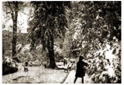 Photo de l'Almanach d'événement météo du 3/11/1966