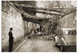 Photo de l'Almanach d'événement météo du 10/11/1963