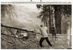 Photo de l'Almanach d'événement météo du 29/12/1996