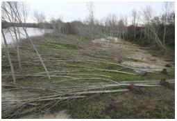 Photo de l'Almanach d'événement météo du 24/1/2009