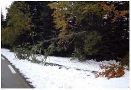 Photo de l'Almanach d'événement météo du 5/10/2003