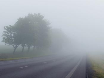 Comment se forme le brouillard et quelle est sa fréquence ?