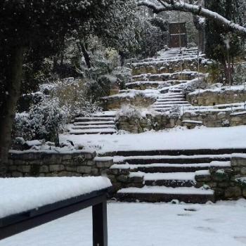 Neige du 16 janvier - Suivi et prévisions