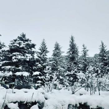 Neige et froid sur la France à la veille de l'équinoxe de printemps 2021