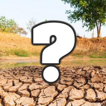 Nappes phréatiques bien remplies : quel risque de sécheresse au printemps et à l'été 2021 ?