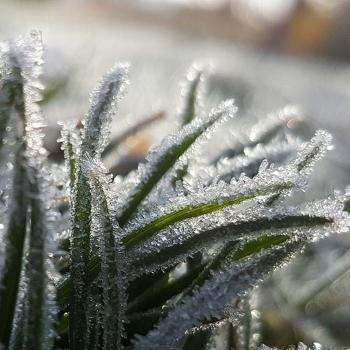 Va-t-on battre des records de froid en France pour un mois d'avril?