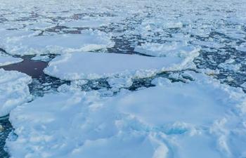 Banquise Arctique : atteinte du maximum annuel pour cette saison 2020-2021