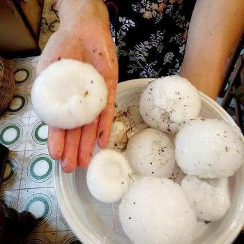 Neige au Brésil, Chaleur au Japon, grêle en Italie, ... L'actualité météo dans le monde en cette fin-juillet 2021