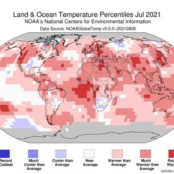 Juillet 2021: mois le plus chaud jamais enregistré dans le monde