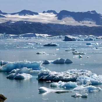 Banquise arctique : A quelques semaines du minimum annuel, l'extension des glaces à la mi-août 2021