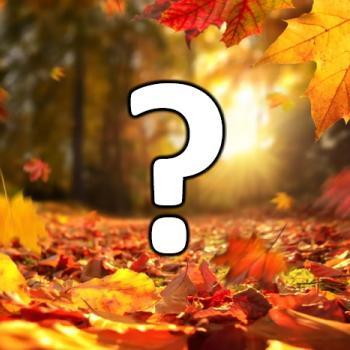 Quelles tendances météo pour le début de l'automne calendaire 2021 ?