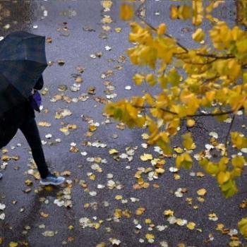 Vers un temps agité avec pluie & vent pour le week-end et la Toussaint 2021