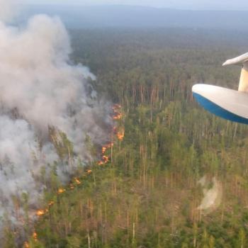 Chaleur et incendies en Sibérie : un risque pour le climat mondial ?