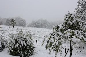 Neige tardive après le 15 mai en moyenne montagne : pas si rare