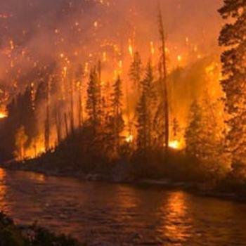 Gigantesques incendies de forêt au Canada et aux États-Unis