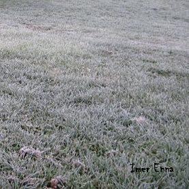 Première gelée jusqu'en plaine en ce début octobre