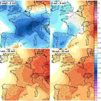 Quelles tendances pour la suite de l'automne ?
