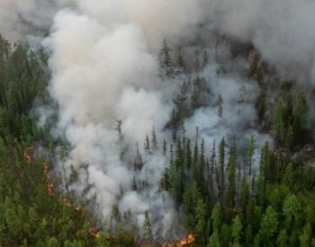 """Les incendies dits """"zombies"""" se réveillent en Arctique"""