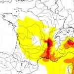 Pollens et allergies : alerte à l'ambroisie