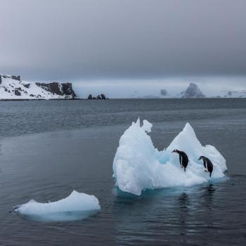 Banquise Arctique : fin de la fonte estivale, 2e étendue la plus faible