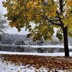 Les dernières couleurs d'automne avant les paysages d'hiver