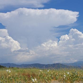 Phénomènes orageux - le cumulonimbus