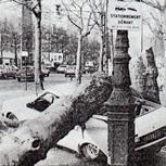 Février 1990 : excessivement doux et tempétueux