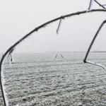 Froid et fortes gelées sur le Nord de la France