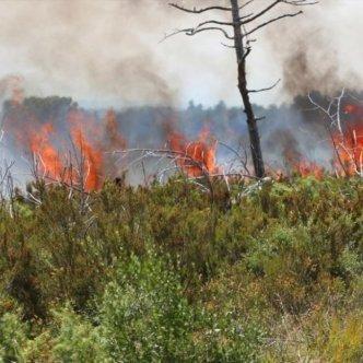 Sécheresse : premiers gros incendies de la saison