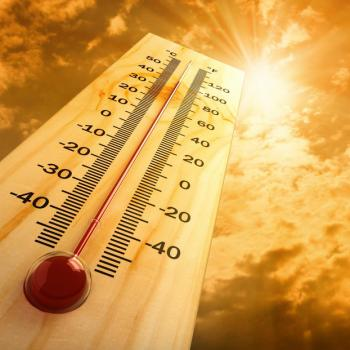 Trop chaud, trop sec : le bilan de l'été 2019
