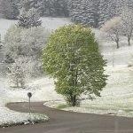 Neige, grésil et gel fin mai 2013