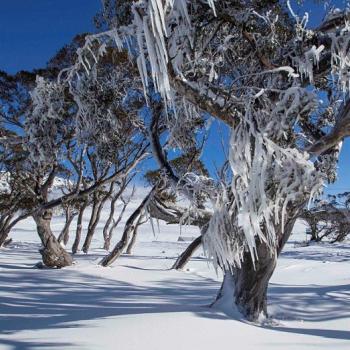 Premières neiges de l'hiver austral en Australie