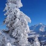 Neige & soleil : des conditions idyliques en montagne