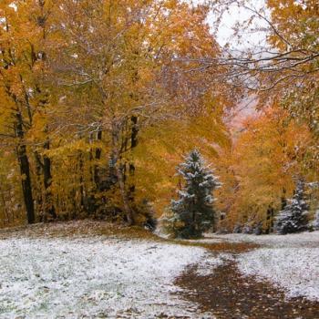 Premières neiges de la saison au Québec