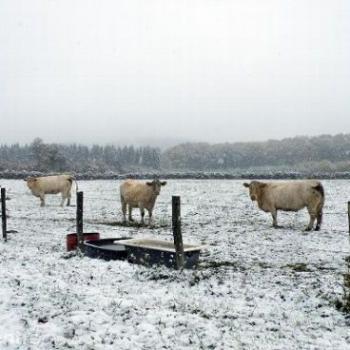 Grande fraîcheur et chutes de neige précoces les 14 et 15 octobre