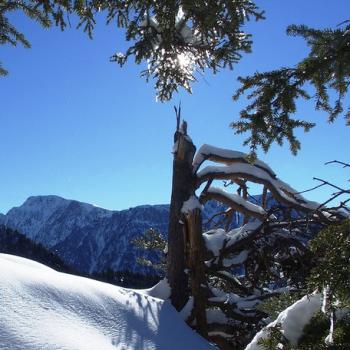 Vacances aux sports d'hiver : enneigement et avalanche