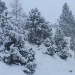 Les vacances de printemps aux sports d'hiver : les hauteurs de neige