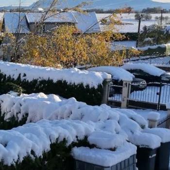 Retour en force de la neige en France
