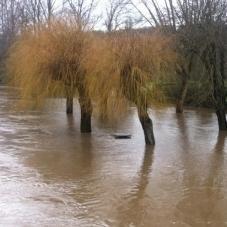 Les crues et les inondations prennent de l'ampleur sur la France