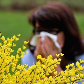 Toux, nez qui coule? Attention au... pollen!