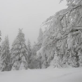 Début de l'hiver météorologique ce 1er décembre