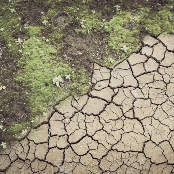 Le risque de sécheresse se maintient malgré le temps perturbé