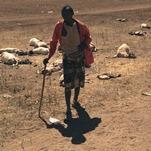 Urgence humanitaire - Sécheresse sur la Corne de l'Afrique